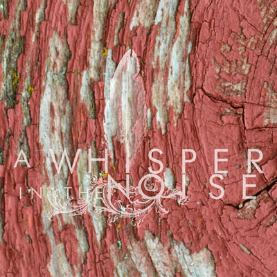 A WHISPER IN THE NOISE - 'TO FORGET'
