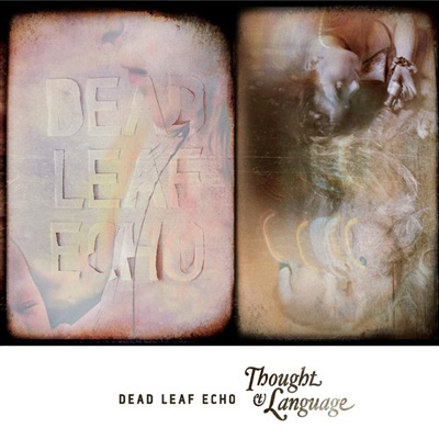 DEAD LEAF ECHO INTERVIEW