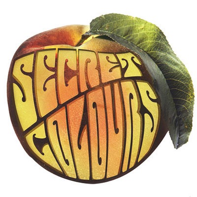 SECRET COLOURS - 'BLACKBIRD (ONLY ONE)'