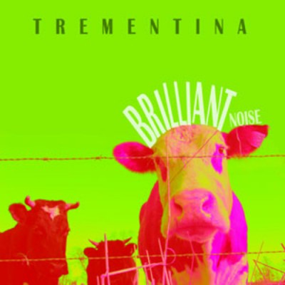 TREMENTINA - 'BRILLIANT NOISE'