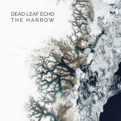 dead-leaf-echo-harrow-split