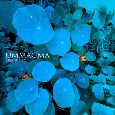 ummagma-frequency