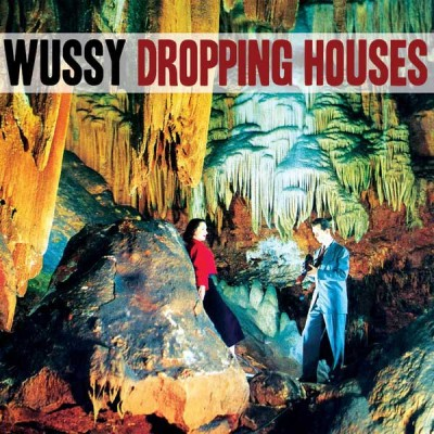 wussy-dropping-houses