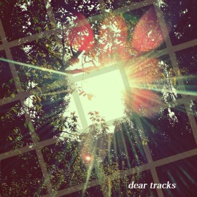 dear tracks-aligning with the sun
