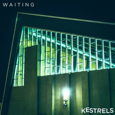 kestrels-waiting