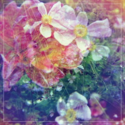 THE STARGAZER LILIES - 'WE ARE THE DREAMERS'