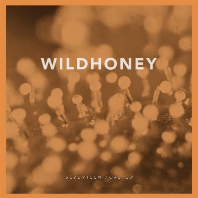 wildhoney-seventeen forever-artwork-400x400