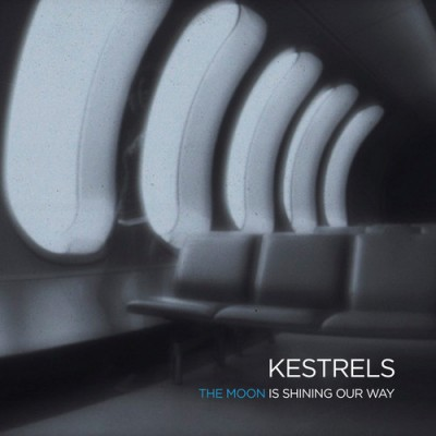 kestrels-the moon is shining our way-artwork