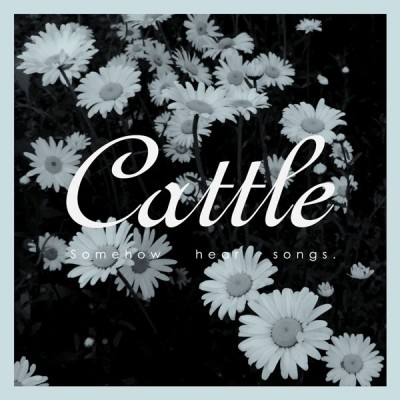 cattle-somehow-hear-songs