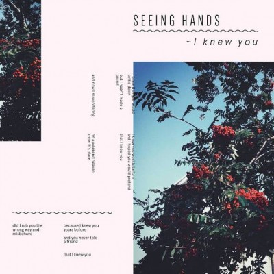 seeing hands-i knew you